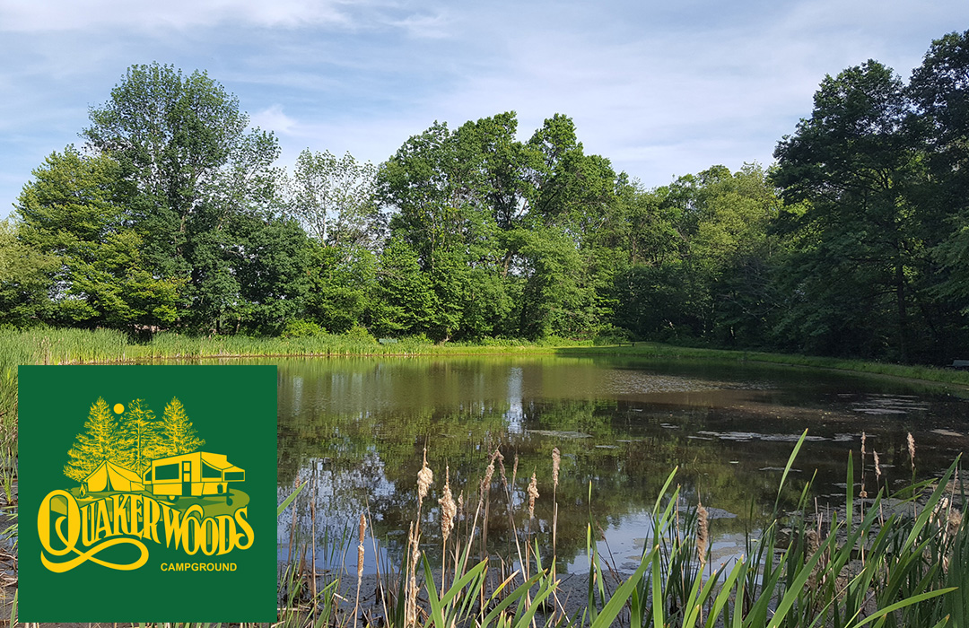 Here is a photo of our catch and release pond, family fun and a way to introduce children to the joys of fishing.